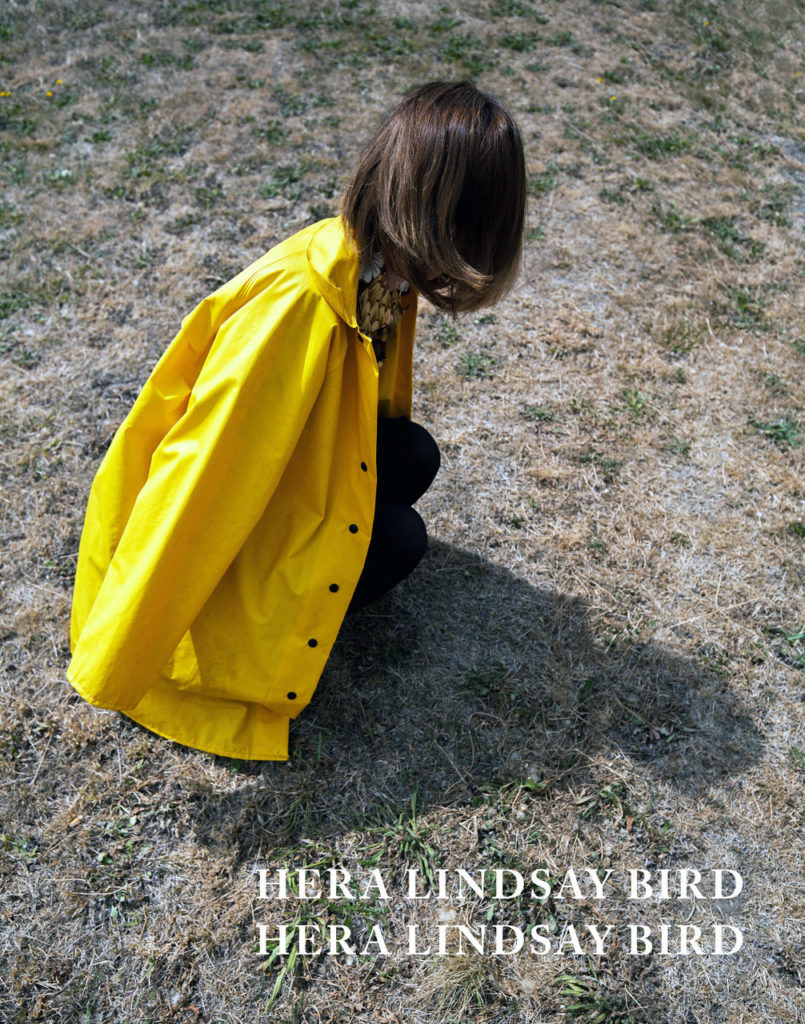 Hera_Lindsay_Bird_final_cover__03325.1460344863.1280.1280