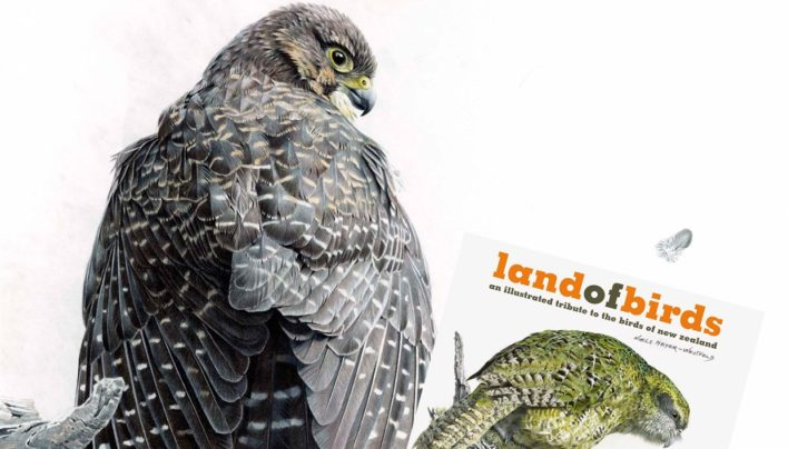 Land of Birds Event, 22nd July 2015