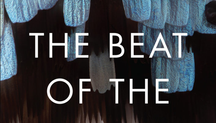 Lunchtime Event | Catherine Chidgey, author of The Beat of the Pendulum, in discussion with Tracey Slaughter | Wednesday 8th November 12-12:45pm | In-store at Unity Books Wellington