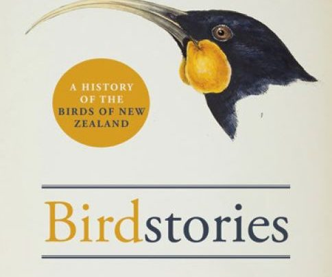 Launch | Birdstories by Geoff Norman | In-store at Unity Books, Tuesday 6th November, 6-7:30pm | 57 Willis Street, Wellington