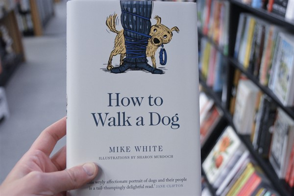 AFTERGLOW: How to Walk a Dog – Mike White